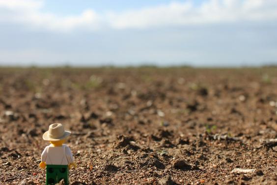 Farmer made of lego in drought-stricken paddock