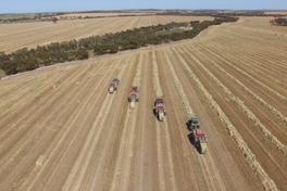 Harvesting fodder