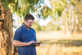 Man in paddock using iPad