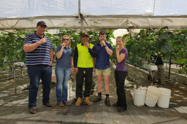 Northern Australia Food Futures Conference participants sampling cucumbers