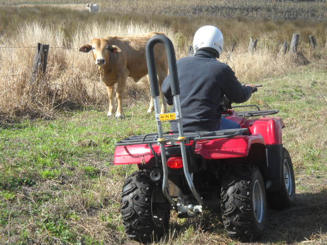 Person on quad bike